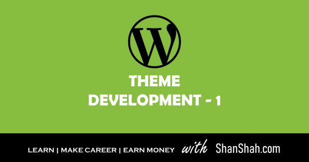custom wordpress theme development
